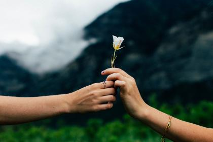 man, woman, couple, people, hands, love, nature, flower, stalk, stem, petal, mountains, vegetation, sky, clouds, horizon, happy