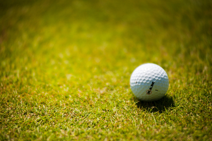 golf,  ball,  course,  grass,  green,  sport,  close up,  white