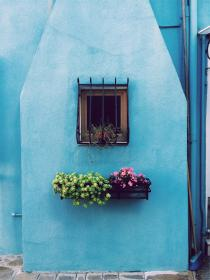 flowers, basket, pots, window, bars, blue, wall, house