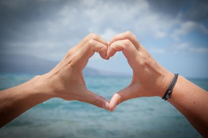free photo of heart  hands