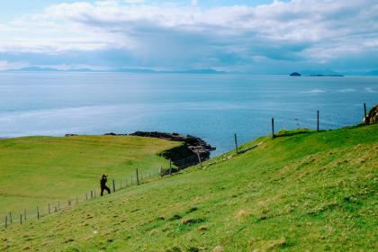 green, grass, lawn, wire, fence, sea, ocean, blue, water, highland, landscape, nature