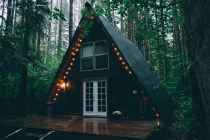 cabin, house, light bulbs, lights, forest, woods, nature, camping, trees, leaves, wood