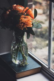 flower,   vase,   window,   plant,   glass,   fresh,   room,   interior,   decoration,   daytime,   flowerpot,   decorative,   home,   decor,  book