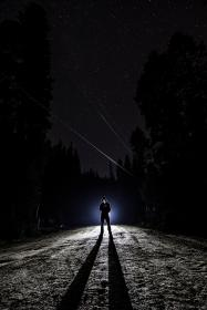 guy, man, male, people, stand, light, shadow, silhouette, spotlight, path, road, dirt, soil, trees, forests, night, sky, stars, constellation, falling, wish