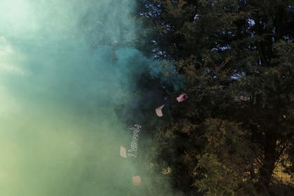 green, trees, plant, nature, smoke, outdoor
