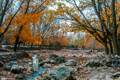autumn, scenery, river, forest, wood, brook, water, blue, leaves, orange, red, rocks, stones, sky
