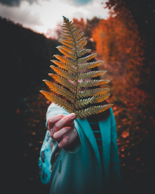 woman,  holding,  fern,  leaf,  autumn,  fall,  forest,  wood,  people,  person,  female,  girl,  red,  tree,  nature