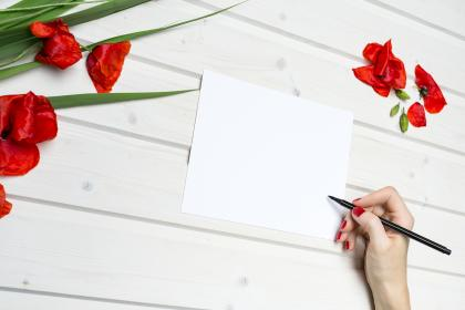 lifestyle, work, paper, pencil, red, flowers, desk, white, wooden, table, write