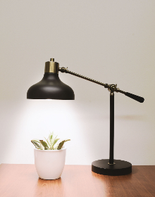 black,  lamp,  light,  desk,  office,  plant,  pot,  house,  white,  wall,  vintage,  nature,  green