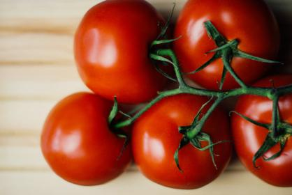 free photo of red  tomatoes