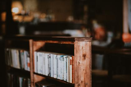 shelf, book, collection, library, pages, sheets, novel, story