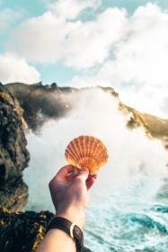 clam, shell, hand, arm, watch, sea, ocean, water, waves, nature, outdoor, rocks, coast, mountain, clouds, sky