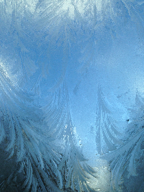free photo of ice   texture