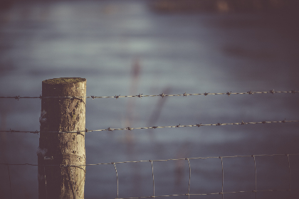 barbed,  wire,  fence,  field,  farm,  lake,  river,  blur