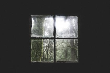 house, home, cabin, old, decrepit, window, panes, squares, view, nature, trees, minimalist