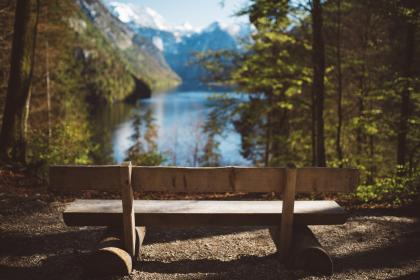 green, trees, plant, nature, forest, lake, water, mountain, outdoor, travel, view, nature, landscape, bench