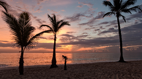 tropical,  beach,  sunset,  vacation,  sand,  water,  ocean,  sea,  sky,  clouds,  palm trees,  travel,  tourism,  dusk,  beautiful,  scenic,  relax,  coast,  shore