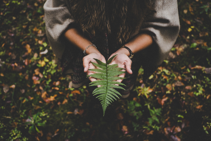 woman,   holding,  leave,  tree,  nature,  adventure,  trip,  vacation,  forest,  woods,  trail,  girl,  female