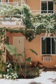 architecture, building, infrastructure, apartment, residences, sunny, day, shade, green, plants, nature