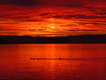 red,  lake,  sunset,  warm,  nature,  outdoors,  water,  birds,  animals,  swimming,  evening,  beautiful,  natural,  clouds,  silhouette,  mountains,  landscape,  scenic