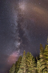 milky way,  galaxy,  stars,  space,  trees,  forest,  nature,  outdoors,  exploration,  constellations,  cosmos,  nebula,  travel