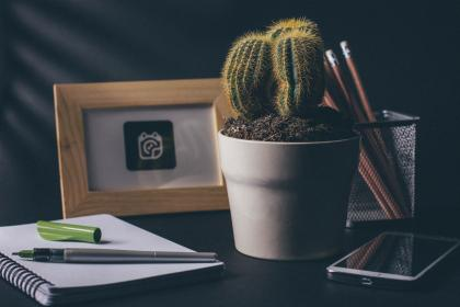 cactus, office, desk, notebook, notepad, pens, pencil, smartphone, mobile, cell phone, picture, frame, business, creative