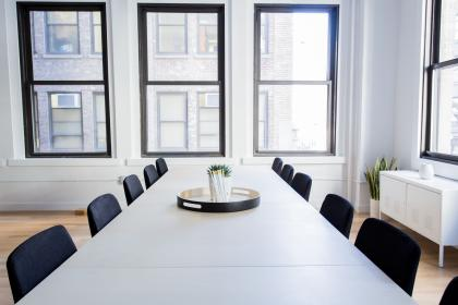 white, room, office, table, chairs, window, glass, frame, table, flower, plant, vase, business