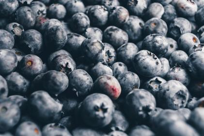 blueberries, berry, fruits, healthy, food