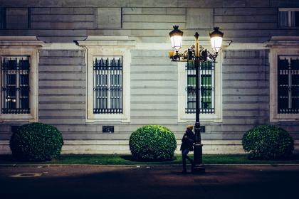 architecture, building, infrastructure, structure, house, home, apartment, windows, glass, lamp, post, light, spark, bulb, dark, night, plant, grenen, leaves, garden, people