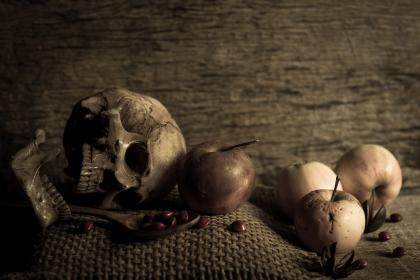 skull, art, apple, fruit, beans, seeds, table, food