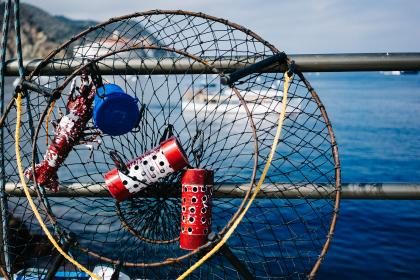 fishing, net, boat