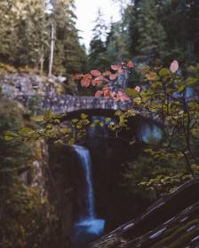 waterfalls, hill, trees, plant, branch, nature, bokeh, blur, bridge, outdoor