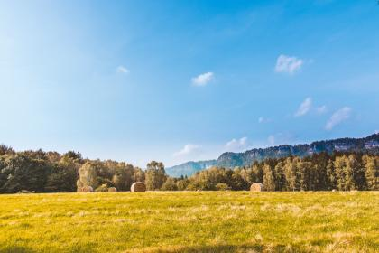 green, grass, field, hay, trees, plants, nature, blue, sky, cloud, landscape, outdoor, view