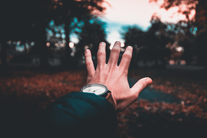 male,  hand,  outreach,  arm,  man,  person,  people,  tree,  forest,  wood,  leaf,  fall,  autumn,  watch,  time,  help