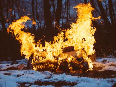 bonfire, fire, flames, wood, logs, snow, nature, outdoors, trees, woods, forest