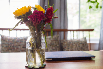 flower,   vase,   window,   plant,   glass,   fresh,   room,   interior,   decoration,   daytime,   flowerpot,   decorative,   home,   decor,  table,  colorful,  jar, computer, laptop, freelance