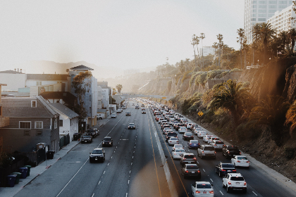 highway,  traffic,  sunlight,  coastal,  road,  cars,  lens,  flare,  busy,  palm,  trees,  buildings,  lane,  coast,  drive,  freeway,  asphalt,  route