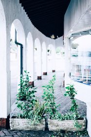 free photo of alley   arches