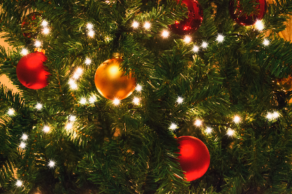 christmas,   christmas lights,   tree,   baubles,   color,   decoration,   green,   red,   seasonal,   festive