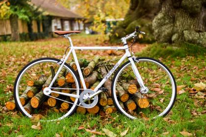 bike, bicycle, woods, log, green, grass, outdoor, leaf, fall, autumn, tree, plant, nature, house