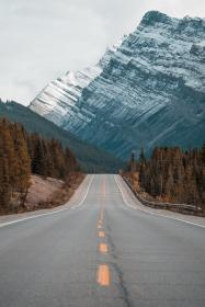 nature, road, highway, travel, adventure, mountain, trees, woods, forest, autumn, fall, trek, hike, climb