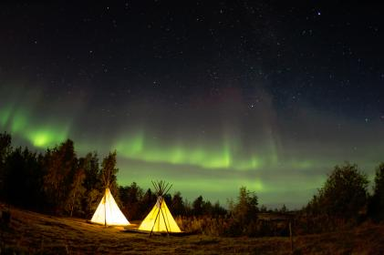camping, night, stars, woods, forest, trees, northern, lights