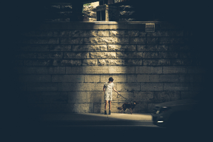 woman,  walking,  dog,  pet,  animal,  night,  light,  city,  street,  glow,  bright,  brick,  wall