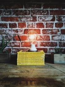 bulb, idea, bricks, red, lightbulb, electricity, electric, power, national geographic, light, read, study