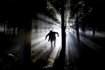 dark, night, light, trees, plant, forest, fear, man, running, people, alone, silhouette