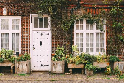 house, home, door, sidewalk, cobblestone, bricks, vines, plants, city