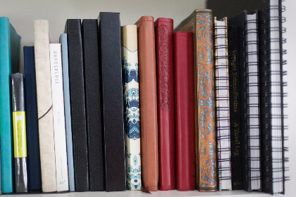 books,  shelf,  book,  notebook,  wall,  spine,  bookcase,  home,  office,  interior,  journal,  information,  reading,  paper