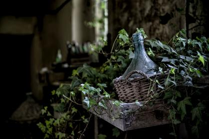 leaves, vines, basket, bokeh, blur, bottle, dirt, dust, wood, plants, old