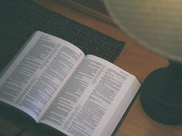 holy, book, bible, reading, religion, table, room