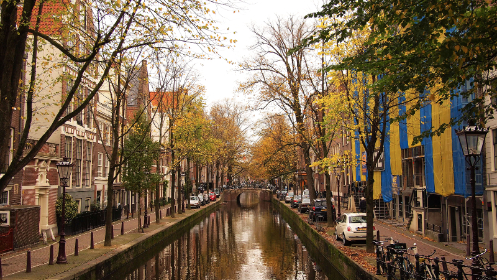 water, canal, streets, trees, fall, autumn, cars, city, urban